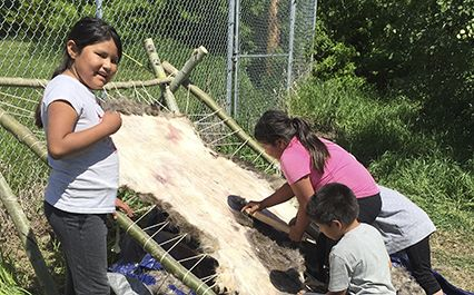 Indigenous and Non-Indigenous School Exchanges